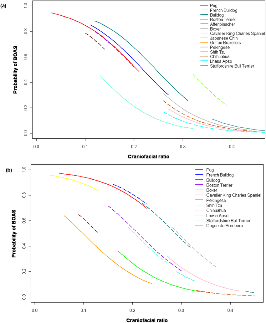 medium resolution of  a b predicted probability of brachycephalic dog breeds being affected by brachycephalic