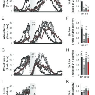 Effects of loss of Ghsr and Mc3r expression on the