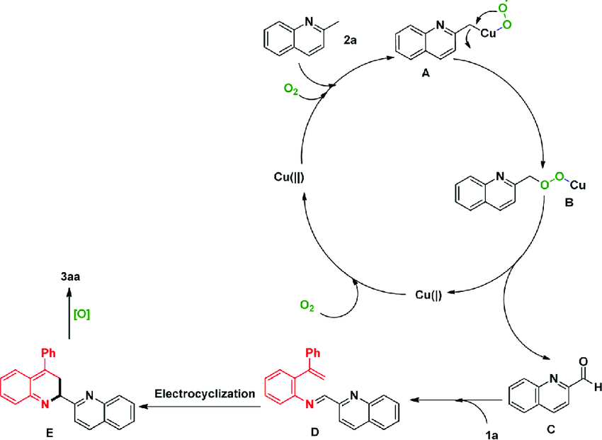 Scheme 4. Proposed Mechanism The Journal of Organic