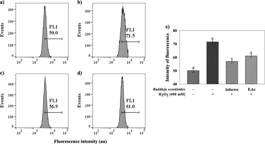 Effect of Buddleja scordioides extracts against oxidative
