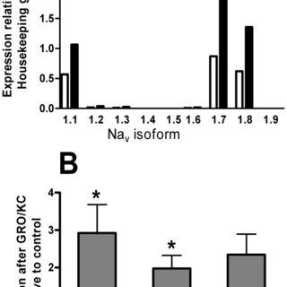 Immunohistochemical detection and immunofluorescence