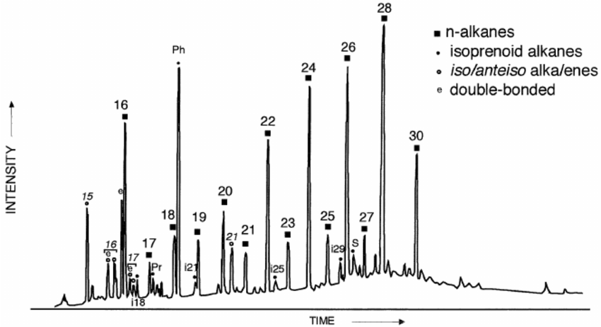 GC trace of aliphatic hydrocarbons from recent sediment of