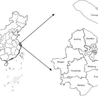 (PDF) Risk assessment of flood disaster in Shanghai based
