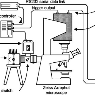 (a) Zeiss longpass (DAPI) filter set: excitation filter