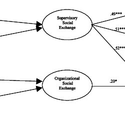 (PDF) The Mediating Effects of Social Exchange