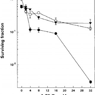 (PDF) Enhancement of 1,25-Dihydroxyvitamin D3-Mediated