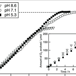 (PDF) Development of a New System for Photocatalytic Water