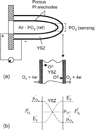 Schematic diagram of a potentiometric oxygen sensor