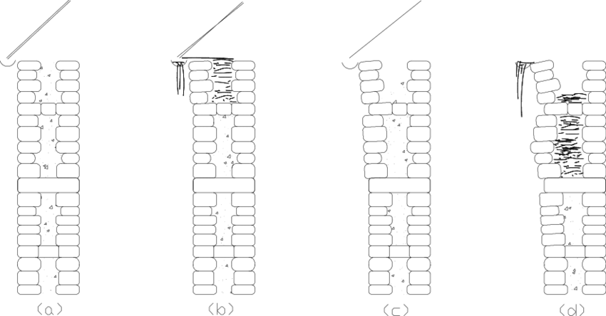 1 Inadequate connection between the outer wythes (a and b