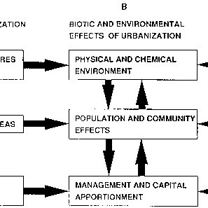 The composite model of the effects of urbanization in