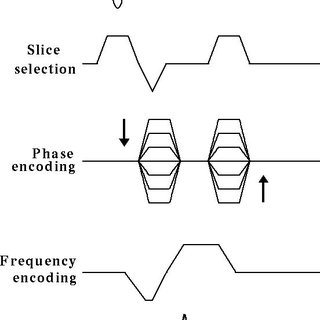 (PDF) Solenoid coil for mouse-model MRI with a clinical 3