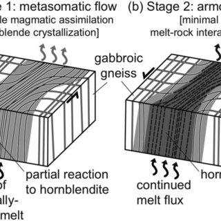 (PDF) Hornblendite delineates zones of mass transfer