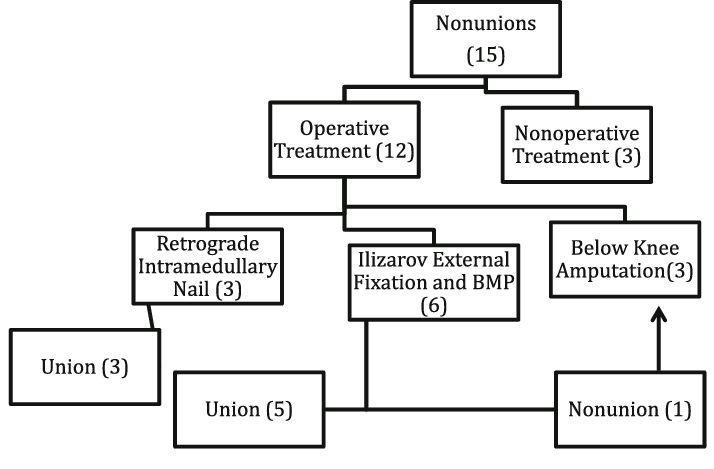 The management of patients with nonunions after the