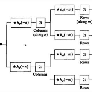 (PDF) Study of Environmental Condition Using Wavelet