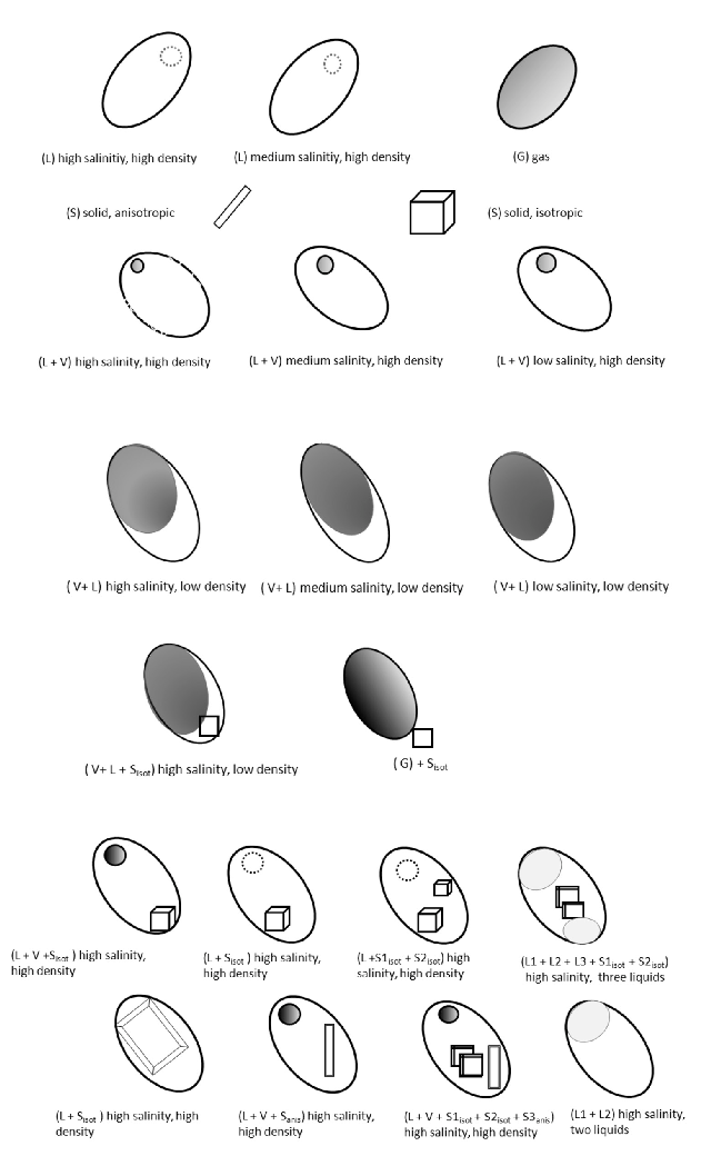 Selection of fluid inclusion types in one single crystal