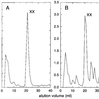 Reversed-phase HPLC analysis of the products obtained