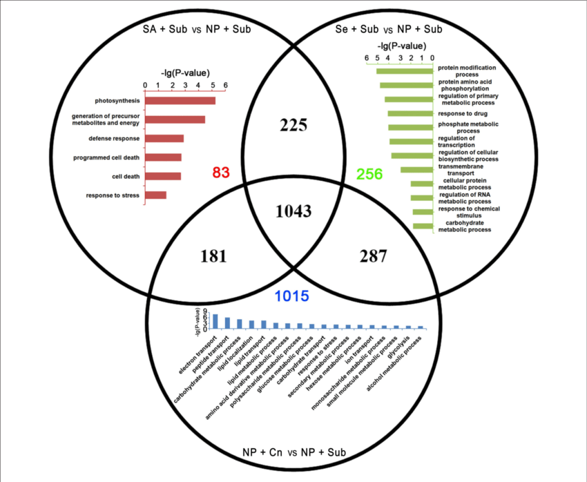 Venn diagram of the up-DETs enriched with GO database