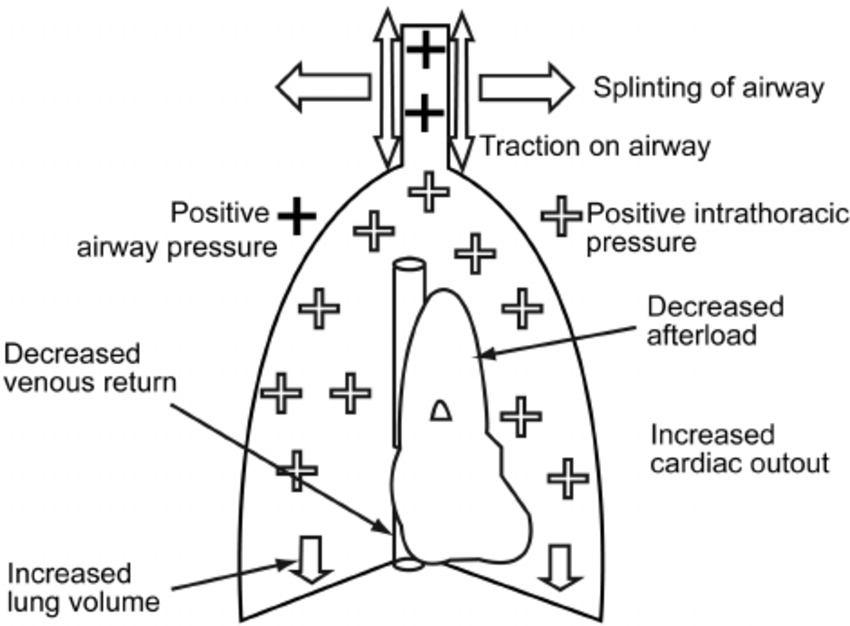 Physiological effects of positive airway pressure (PAP