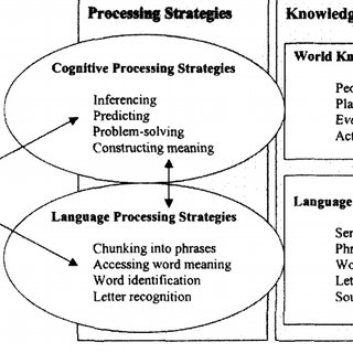 A hypothetical model of the reading process with some