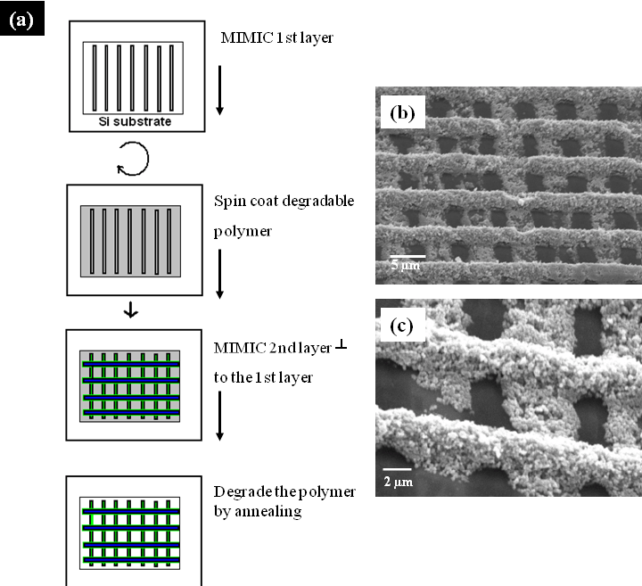 (a) Schematic of the MIMIC procedure for layer-by-layer