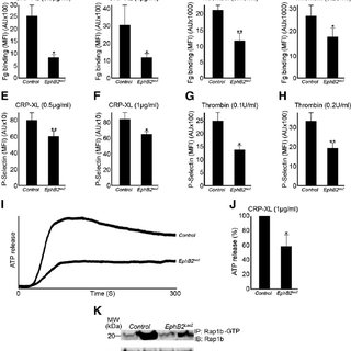(PDF) EphB2 regulates contact-dependent and independent