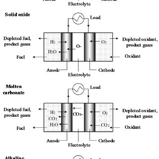 Dominant fuel cell types showing chemical reactions