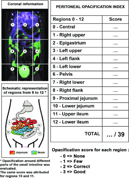 small resolution of schematic representation of the poi