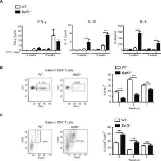 Batf3-deficient mice develop an exacerbated L. major