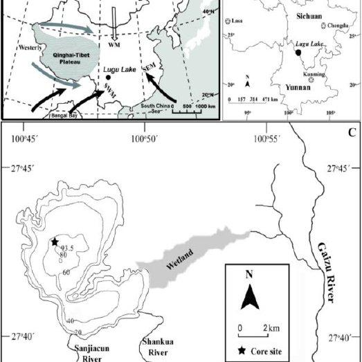 (PDF) Resilience of floodplain vegetation to hydrologic