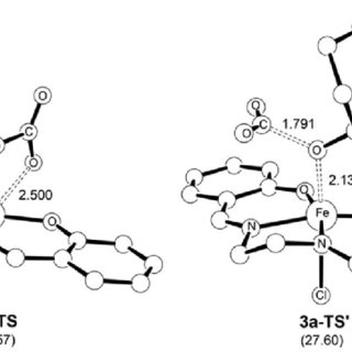 (PDF) Computer-Aided Rational Design of Fe(III)-Catalysts