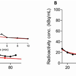Creation of ligand-specific PET template and time-activity