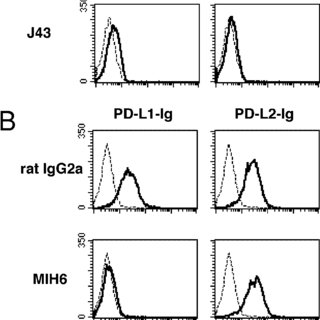 (PDF) The programmed Death-1 (PD-1) Pathway Regulates