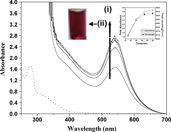 Absorption spectra of a solution containing 1 × 10 −4 M Au