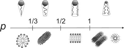 1 Schematic illustration of the impact of packing