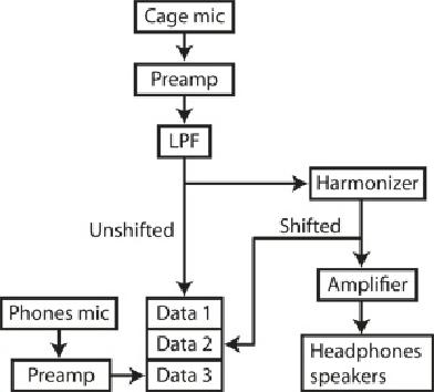 Circuit summary. Flowchart summarizing system connectivity