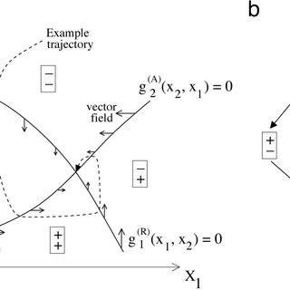 (PDF) Oscillations in negative feedback loops