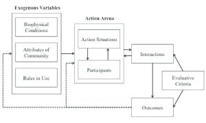 The Institutional Analysis and Development (IAD) Framework