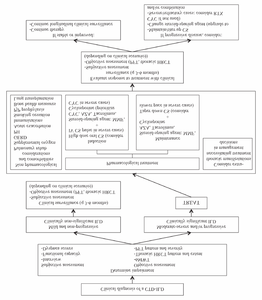 hight resolution of management algorithm for connective tissue disease associated interstitial lung disease ctd ild