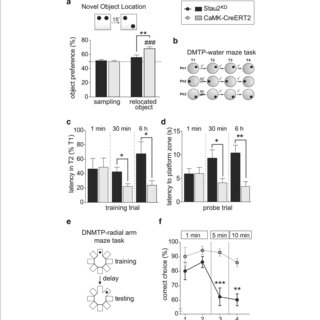(PDF) Forebrain-specific, conditional silencing of