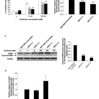 ZNF217 expression induces resistance to paclitaxel. Cell