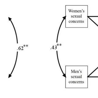 Conceptual framework based on Roy's adaptation model
