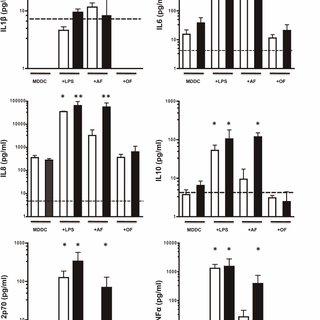 Effect of P. alliacea fractions on MDDC morphology