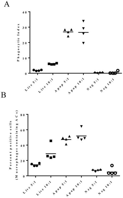small resolution of phagocytic index pi provides a direct measure of macrophage function comparison of data