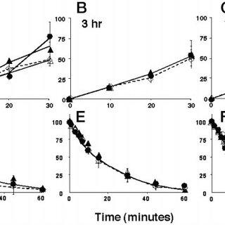 HA-Rab5(Q79L) expression in stably transformed tTA- HeLa