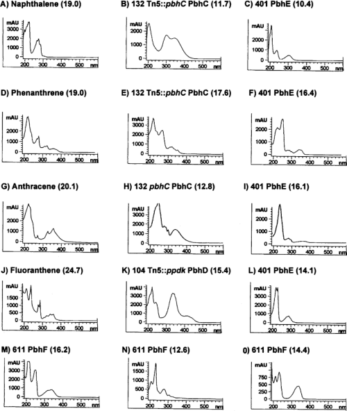 small resolution of uv absorption spectra of parent pahs and metabolites detected by hplc in culture supernatants of bacteria