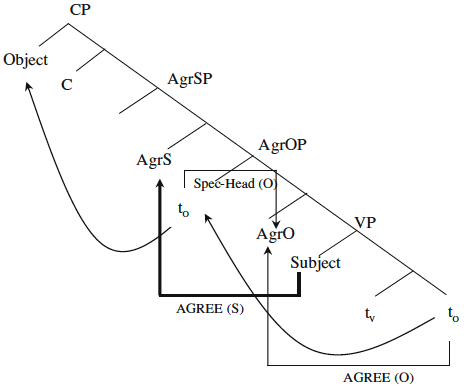 3. Syntactic structure of a subject-verb agreement