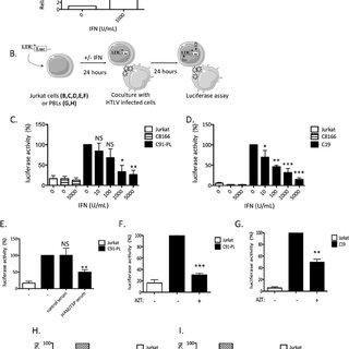 Detection of retroviral reverse transcriptase activity
