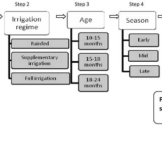 (PDF) A decision support system for sugarcane variety