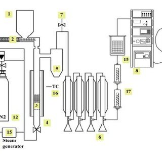 Schematic diagram of a small fluidized bed reactor. 1