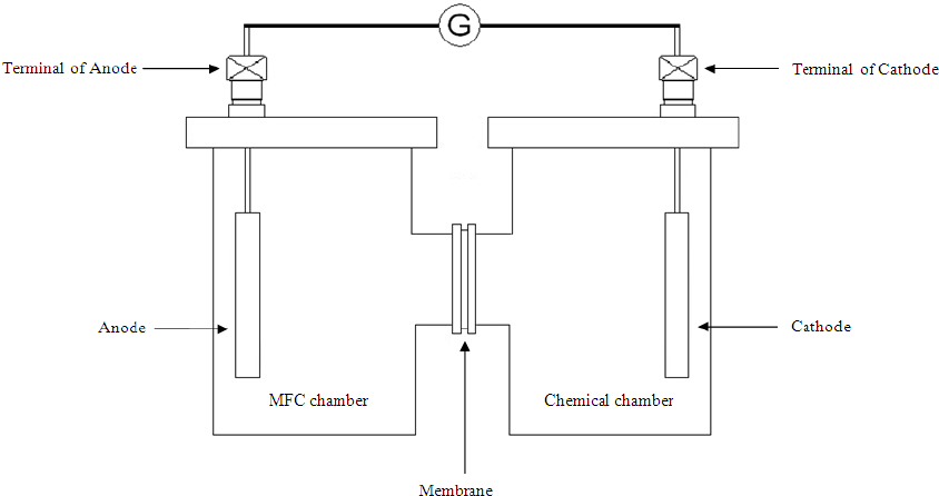Schematic diagram of MFC fabricated chamber system with